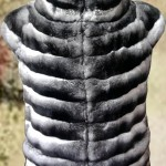 Пошив мехового жилета