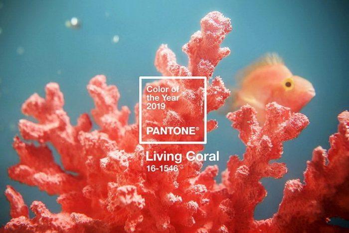 Цвет в тренде: цвет 2019 - живой коралл